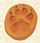 Pet pawprint